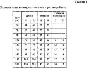 Размеры почек в норме