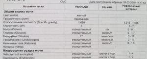 Анализ мочи общий лейкоциты 25
