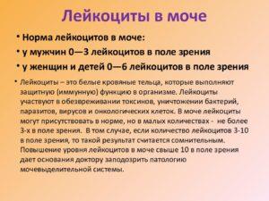 Лейкоциты 30 50 в моче после родов