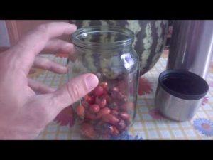 Очищение почек в домашних условиях арбузом