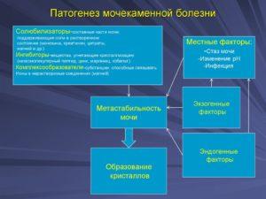 Мочекаменная болезнь этиология патогенез