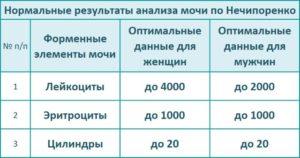 Норма лейкоцитов в моче по нечипоренко у детей