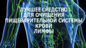 Чистка кишечника печени почек лимфы