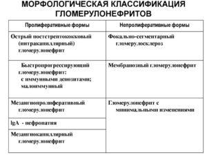 Гломерулонефрит классификация терапия