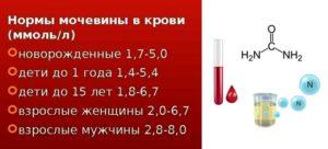 Мочевина в крови повышена причины у ребенка