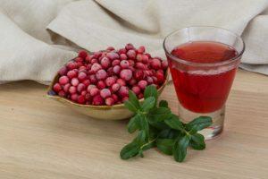 Брусника и пиелонефрит