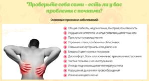 Как понять что болят почки симптомы у мужчин