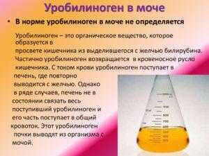 Уробилиноген следы в моче при беременности