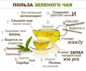 Вреден ли для почек зеленый чай