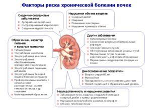 Как выявить болезнь почек