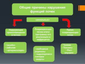 Последствия нарушения деятельности почек