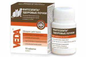 Лекарственные препараты при лечении почек