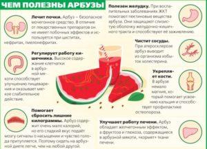 Полезен ли арбуз при пиелонефрите