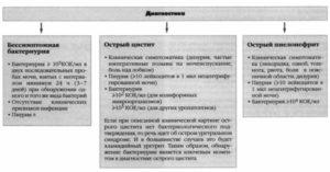 Лечение хронического пиелонефрита и цистита