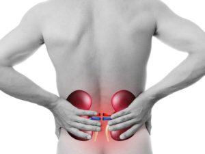 Почему болит спина в районе почек
