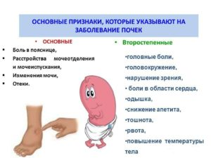 Болезнь почек у мужчин как лечить