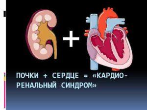 Может ли болеть сердце из за почек