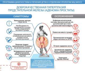 Профилактика гиперплазии предстательной железы