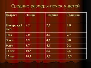 Размер почек у ребенка в 5 лет