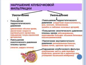 Нарушение фильтрации почек причины и лечение