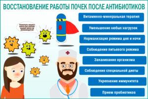 Заболели почки от антибиотиков