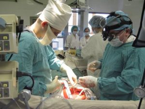 Трансплантация почки в россии