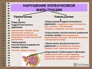 Как повысить клубочковую фильтрацию почек медикаментозно