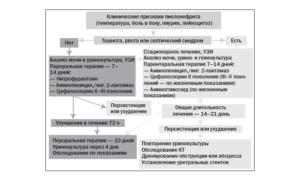 О пиелонефрит клинические рекомендации