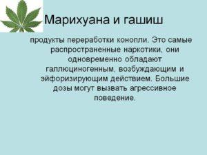 Сколько дней сохраняется марихуана в моче