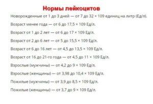 Лейкоциты в моче норма у мужчин норма