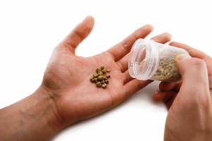 Вывод песка из почек травами
