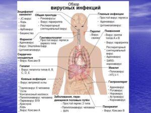 Какие болезни бывают у человека