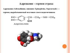 Адреналин это гормон какой железы