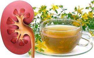 Народная медицина при воспалении почек