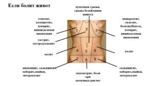 Пульсирующая боль внизу живота слева у мужчин