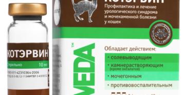 Какие лекарства давать коту при мочекаменной болезни