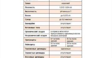 Норма общего анализа мочи у женщин таблица