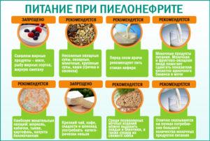 Режим питания при хроническом пиелонефрите