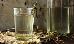 Березовый сок при пиелонефрите